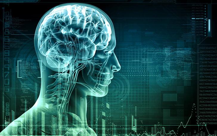 ЕЕГ-биофийдбек Невротренинг
